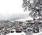 Shimla: Snowfall