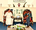 Venkaiah Naidu meets Zimbabwe's President Emmerson Mnangagwa