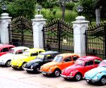 World Wide VW Beetle Day