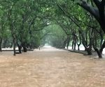 Flood in Sanjay Gandhi National Park