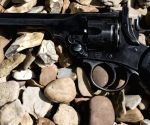 Webley & Scott guns to be manufactured in UP
