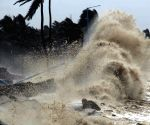 Need mitigative steps to save livestock from cyclones: Experts