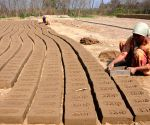 Women busy making bricks
