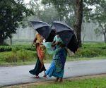 IMD predicts heavy rain in TN, Puducherry for next three days