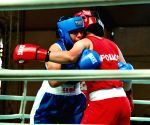 Women's National Boxing: Reigning Asian Champ Pooja Rani sails into quarters