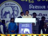 BSP chief Mayawati addresses a rally ahead of Gujarat Assembly polls in Rajkot on Dec 5, 2017.
