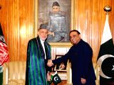 Photo released by the Press Information Department (PID) on Aug. 26, 2013 shows Pakistani President Asif Ali Zardari (R) shakes hands with Afghan President ..