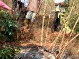 The debris of IAF Kiran aircraft that crashed in the fields near Nagulabanda in Siddipet district of Telangana after taking off from Air Force Station, Hakimpet on Nov 24, 2017. The woman ...