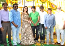 Hyderabad: Launch of Telugu movie Bengal Tiger