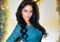Mumbai: Roar - Tigers of the Sunderbans star cast media interaction
