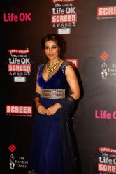 Actor Bipasha Basu during the 20th Annual Life OK Screen Awards in Mumbai, on January 14, 2014.