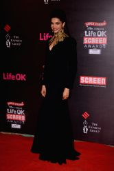 Actor Deepika Padukone during the 20th Annual Life OK Screen Awards in Mumbai, on January 14, 2014.