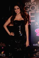 Actress Aarti Chhabria during COLORS Golden Petal Awards 2013 in Mumbai on Dec.14, 2013.