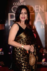 Actress Navni Parihar during COLORS Golden Petal Awards 2013 in Mumbai on Dec.14, 2013.