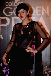 Actress Sapna Pabbi during COLORS Golden Petal Awards 2013 in Mumbai on Dec.14, 2013.