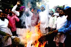 Congress workers stage a demonstration against the policies of SAD led Punjab Government as well as BJP led Central Government in Amritsar, on March 30, 2015.
