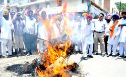 People affiliated to various organisations burn effigy of Punjab government during a demonstration in Amritsar, on June 2, 2015.