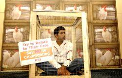 Bengaluru: Rohan Bopanna campaigns for PETA