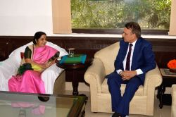 External Affairs Minister Sushma Swaraj during a meeting with Nepal Foreign Minister Dr. Prakash Sharan Mahat in New Delhi May 5, 2017