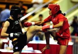 Jakarta (Indonesia): 7th Sanda World Cup