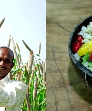 Millet-based diet can low