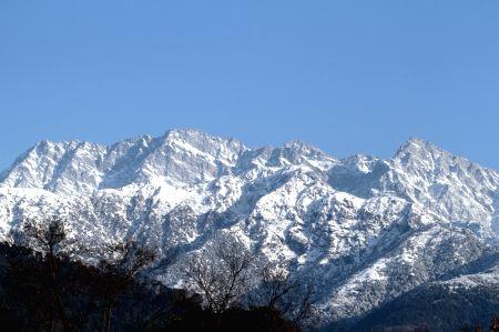 After snowfall, it's bright sunny in Shimla