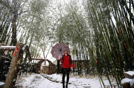 CHINA-WEATHER-SNOWFALL