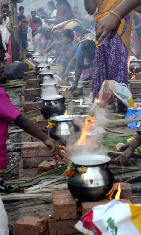 mumbai-women-celebrate-pongal-at-dharavi-in