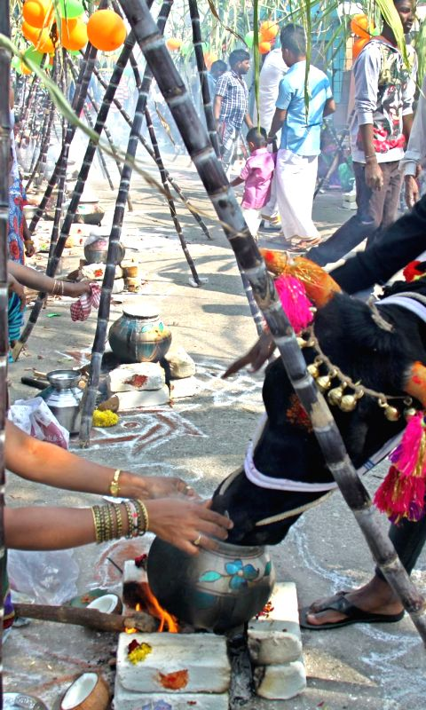 women-busy-making-sweet-pongal-on-during-a