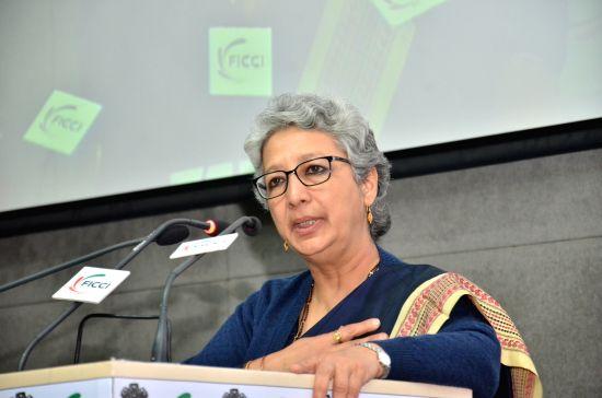 Commerce Secretary Rita Teaotia addresses during the India-Africa Agribusiness Forum at FICCI in New Delhi, on Feb 10, 2016.