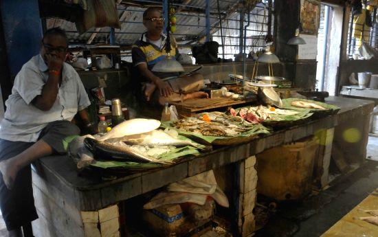 Fish market. (Image Source: IANS)