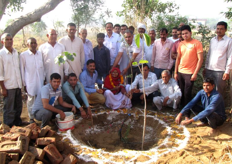 104-year-old Bharto Devi plants Neem, Banyan and Sacred fig tree at cremation ground in Gurugram on May 1, 2017.