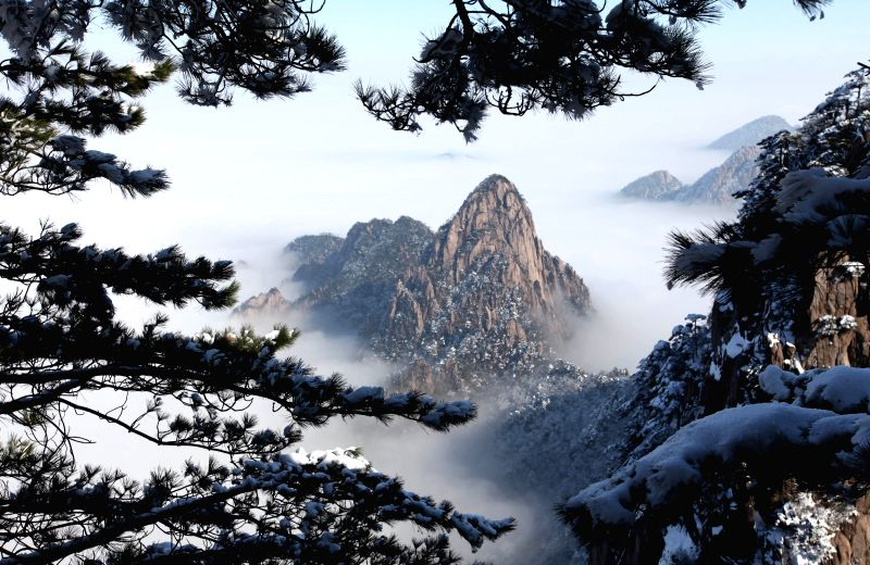 Photo taken on Jan. 15, 2015 shows the snow scenery of Huangshan Mountain in Huangshan City, east China's Anhui Province.
