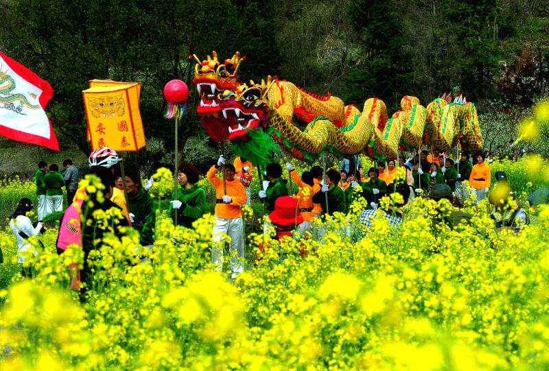 People perform dragon dance in the rape flower field in Nancang Village of Wuyi County, east China's Zhejiang Privince, March 22, 2015. (Xinhua/Zhang ...