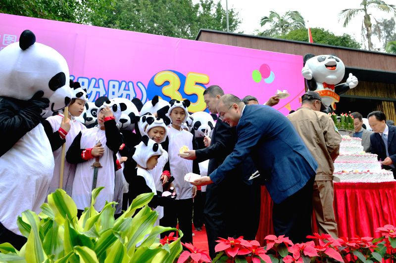 A birthday party is held for giant panda Basi at the panda research and exchange center in Fuzhou, capital of southeast China's Fujian Province, Nov. 28, 2015, to ...