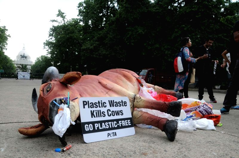 A dummy cow carcass on display during an awareness rally on the ill effects of plastic usage on environment, organised on the eve of World Environment Day; in Kolkata on June 4, 2018.