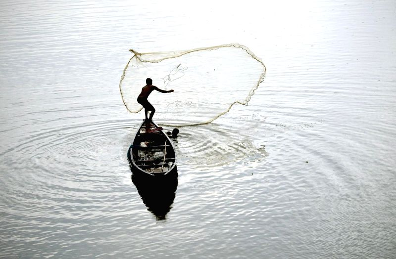 A fisherman casts his net in the Manu river in Chanripur of Tripura's Unnakoti district on May 2, 2014. The water level of the river has reduced considerably during the summers.