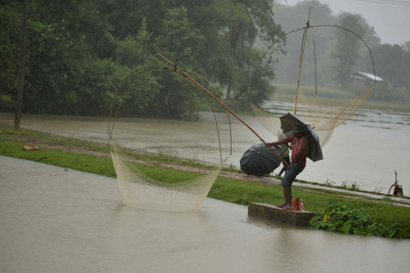 A fisherman uses Chinese fishing nets to catch fishes at a flooded paddy field, in Assam's Nagaon on June 14, 2018.