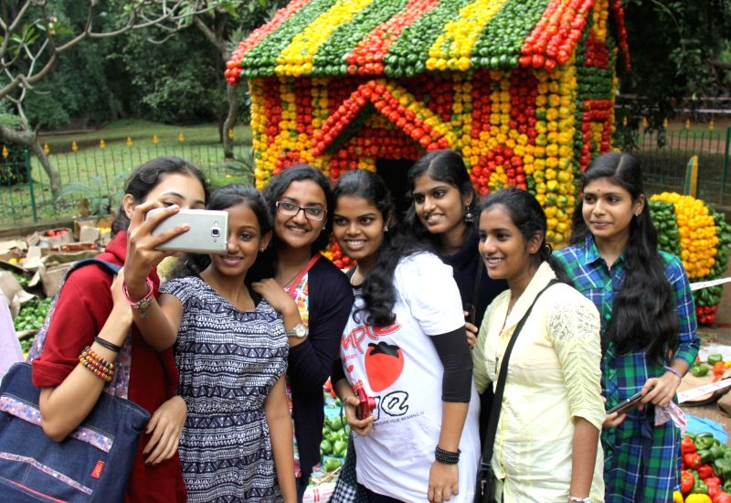 A hut made up of capsicums at Cubbon Park,  in Bengaluru on Nov 13, 2015.