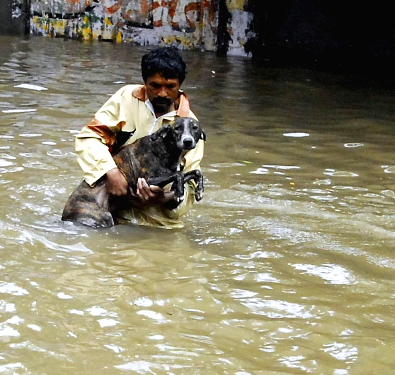 A man carries a street dog as Ahmedabad streets get flooded after heavy rains in Ahmedabad on July 30, 2014.