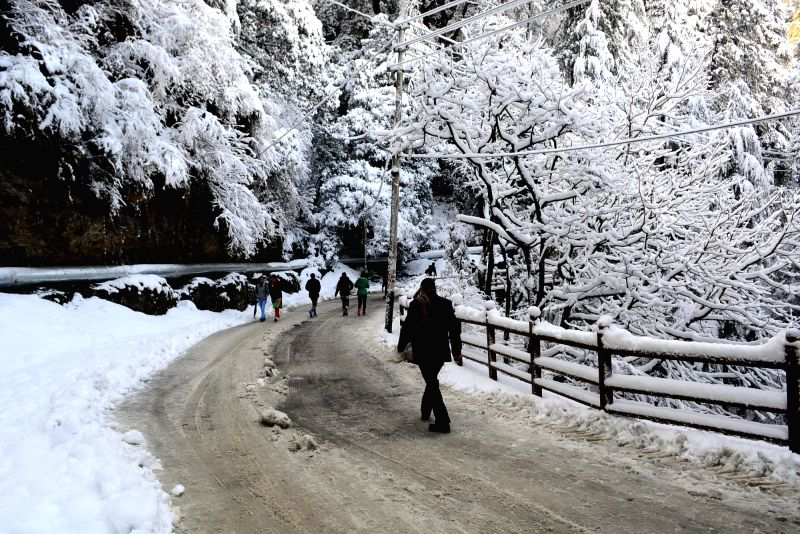 A man walks down a snow clad road of Shimla on Jan 24, 2018.