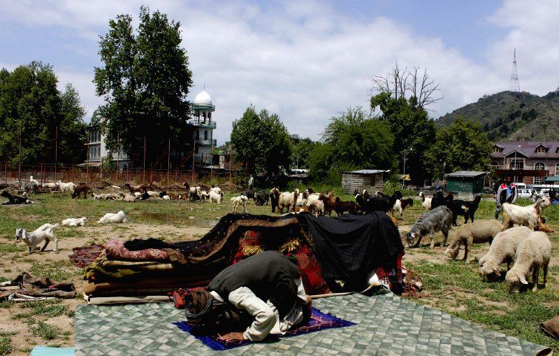 A nomad Bakarwal offers prayers at Srinagar polo ground on May 15, 2014.