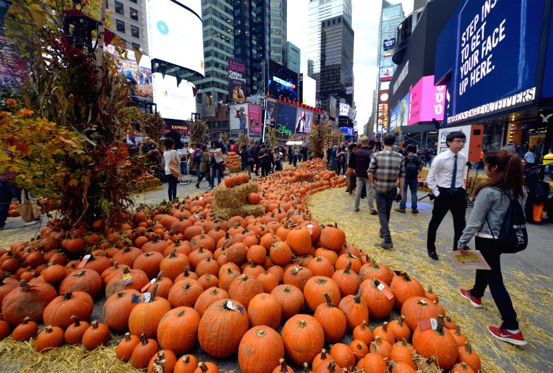 A pop-up pumpkin patch is set up for Halloween in Times Square as a promotion for the App Google Photos, in New York, the United States, Oct. 29, 2015. Visitors ...