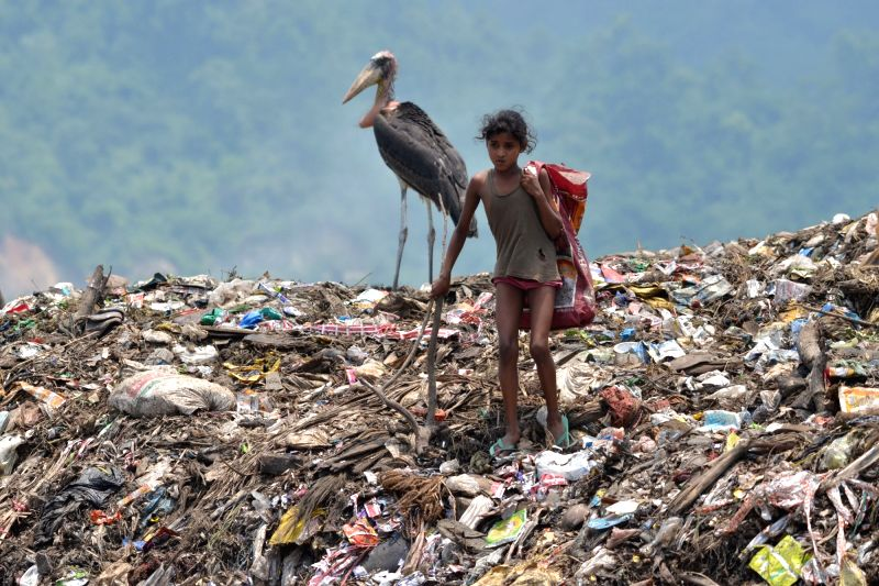 A rag-picker collects recyclable materials from heaps of rubbish ahead of 'World Environment Day' near Deepor Beel wildlife sanctuary on the outskirts of Guwahati on June 4, 2016.