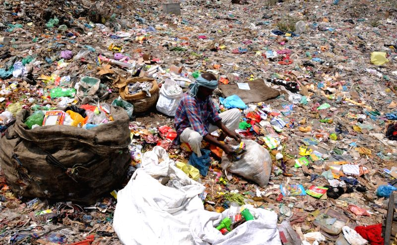 A rag picker seen collecting recyclable items from garbage at a dump-yard on the eve of World Environment Day, in Amritsar on June 4, 2018.