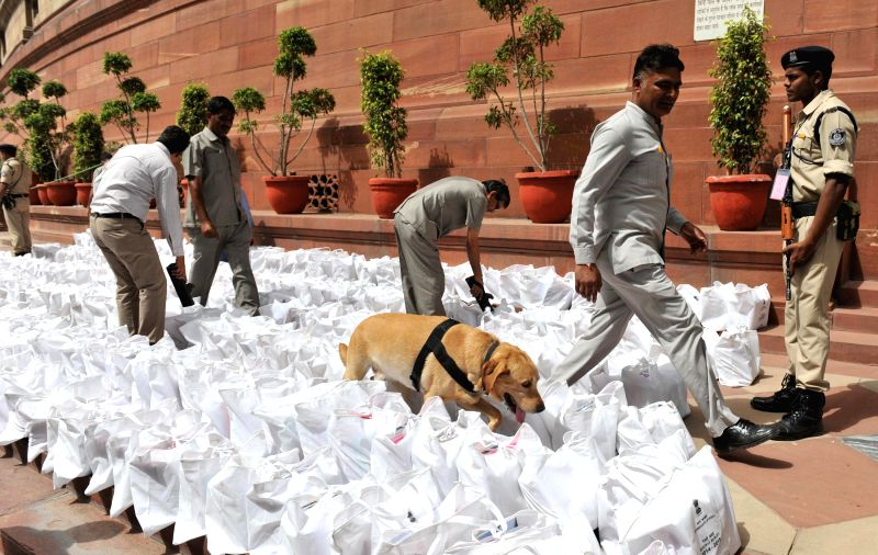 A sniffer dog inspect the documents pertaining to Rail budget 2014-15 for explosives before they are taken inside the Parliament in New Delhi on July 8, 2014.
