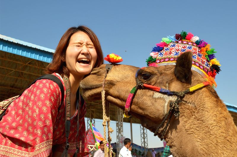 A tourist poses with a camel during the Pushkar Fair in Rajasthan, on Nov 19, 2015.