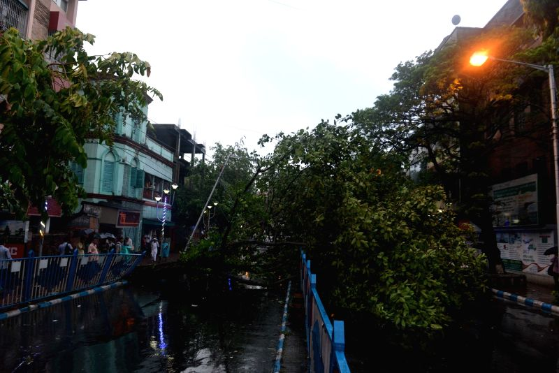 A tree that fell during heavy rains blocks a road in Kolkata, on May 23, 2016.