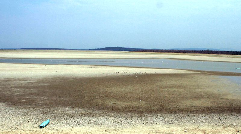 A view of dried up Poondi reservoir - one of the sources of water for Chennai.