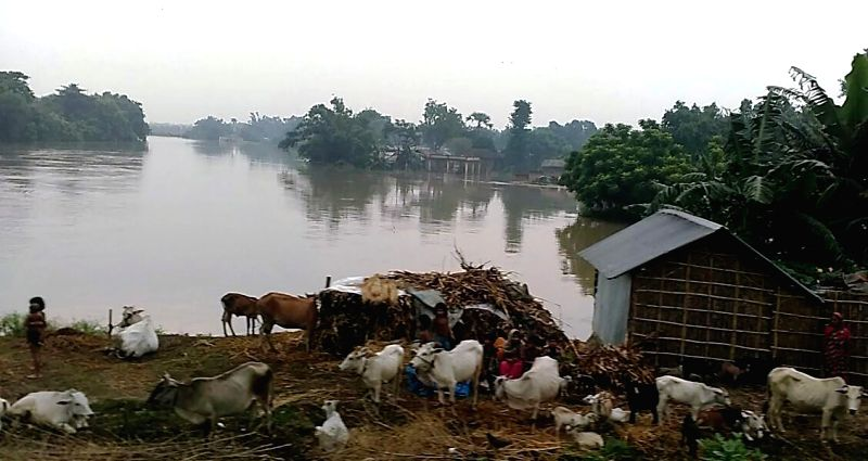 A view of flooded village in Katihar district of Bihar on July 28, 2016.